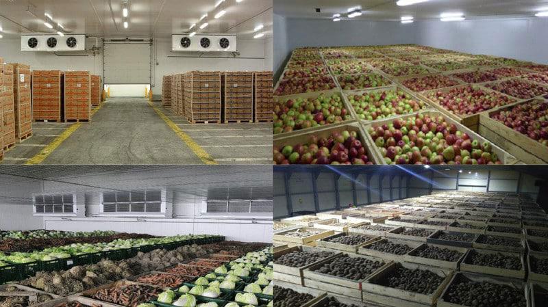 Склад вместимостью 4 тысяч тонн овощей и фруктов