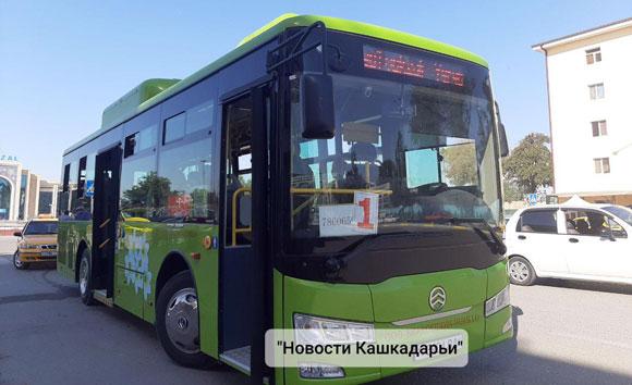 Новые автобусы вышли на маршрут