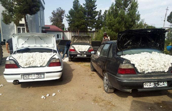 В Кашкадарье пытались украсть почти 1,5 тонны хлопка