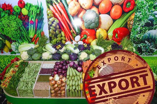 Модернизация сельского хозяйства позволит увеличить экспорт овощей и фруктов более чем в два раза