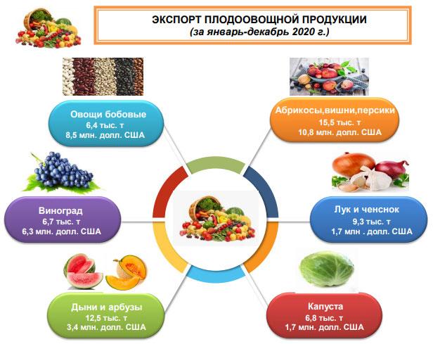 За год из Кашкадарьи в Россию экспортировано свыше 20 тысяч тонн плодоовощной продукции